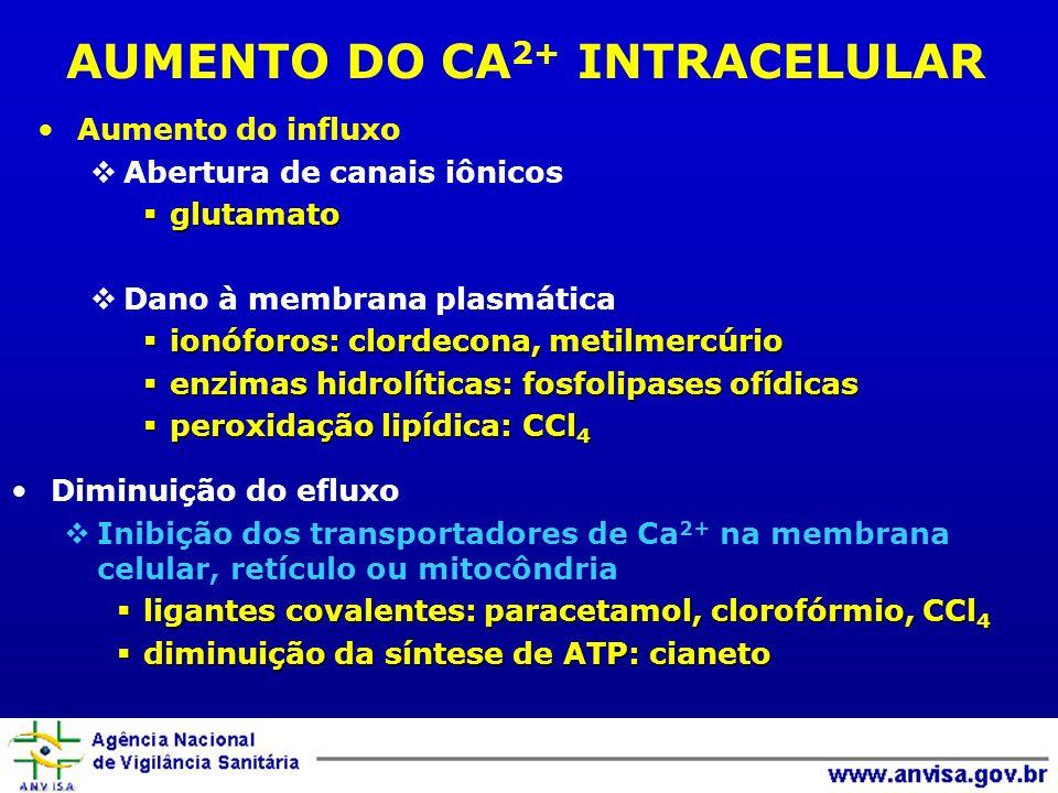 AUMENTO DO CA 2+ INTRACELULAR Aumento do influxo Abertura de canais iônicos glutamato glutamato Dano à membrana plasmática ionóforos: clordecona, meti