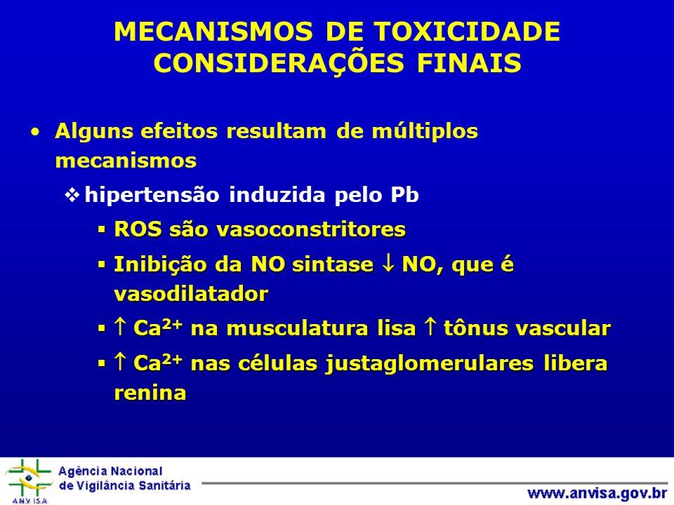 Alguns efeitos resultam de múltiplos mecanismos hipertensão induzida pelo Pb ROS são vasoconstritores ROS são vasoconstritores Inibição da NO sintase