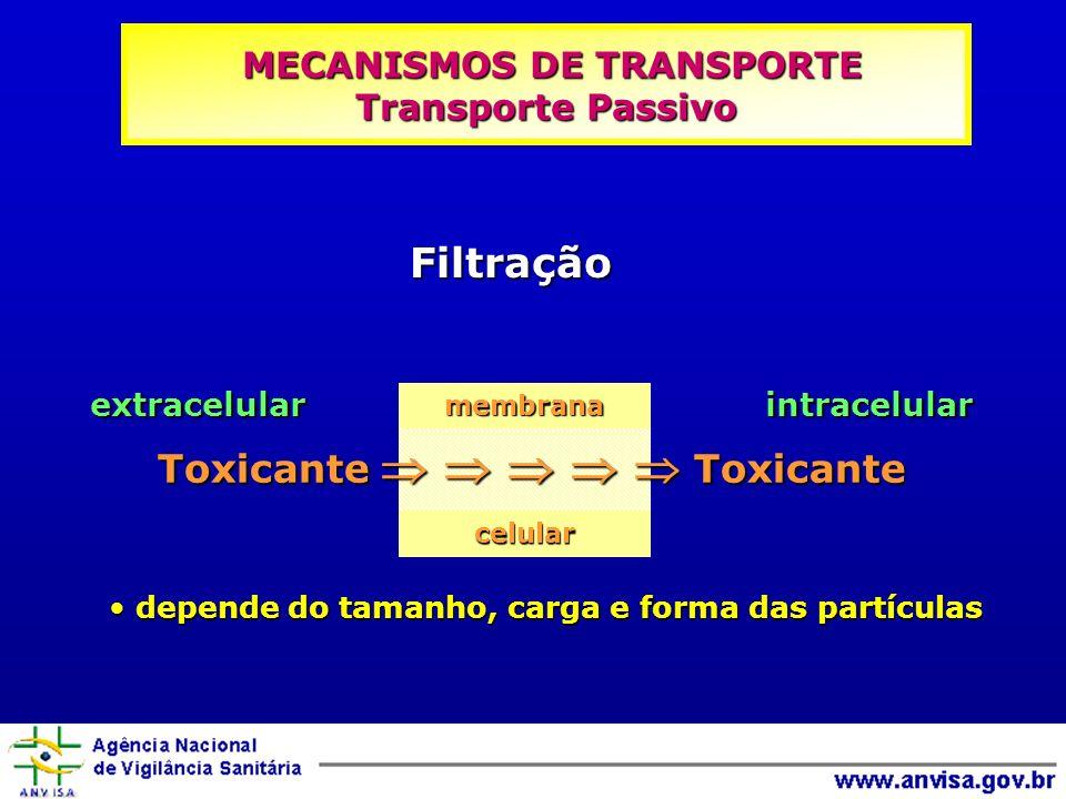 depende do tamanho, carga e forma das partículas depende do tamanho, carga e forma das partículas Filtração extracelular intracelular Toxicante Toxica