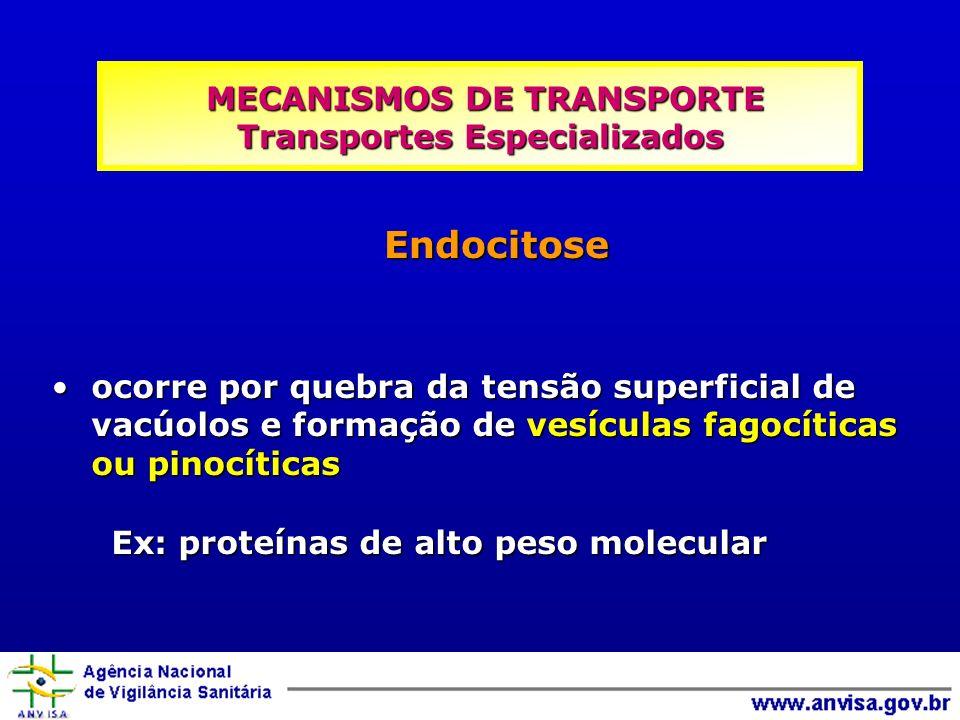 ocorre por quebra da tensão superficial de vacúolos e formação de vesículas fagocíticas ou pinocíticasocorre por quebra da tensão superficial de vacúo
