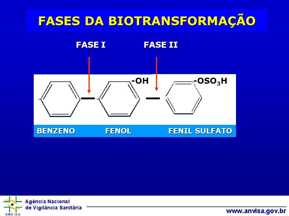 -OH FASE I FASE II BENZENO FENOL FENIL SULFATO -OSO 3 H FASES DA BIOTRANSFORMAÇÃO