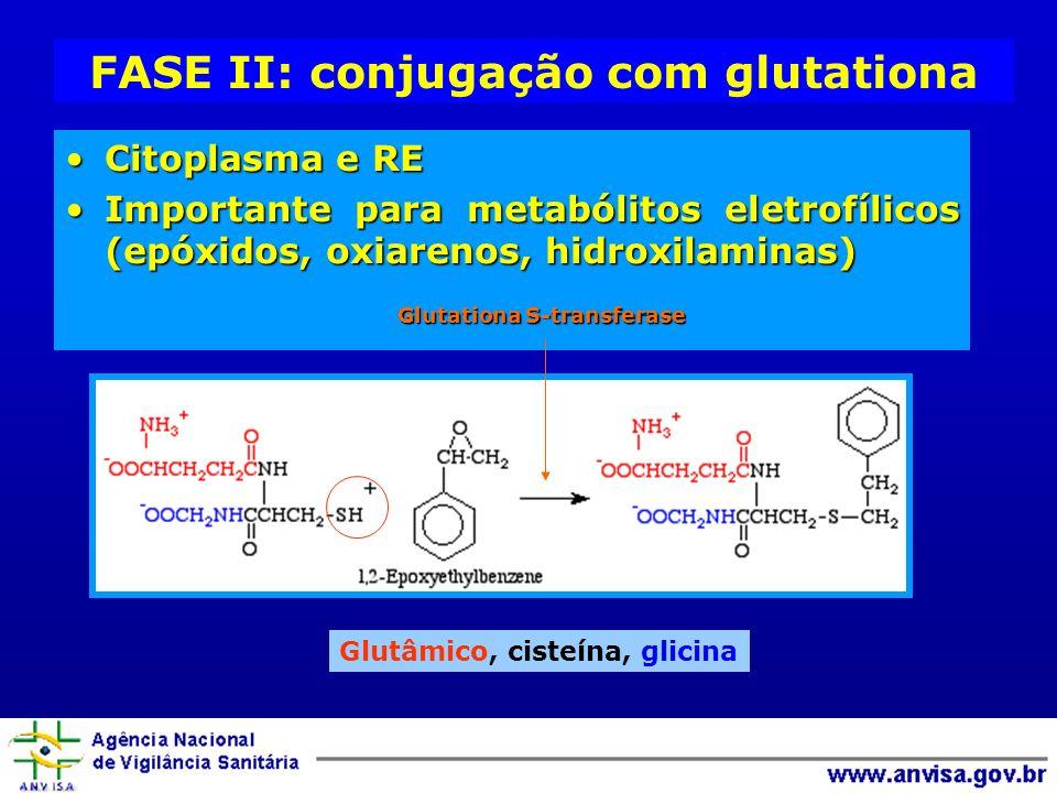 FASE II: conjugação com glutationa Citoplasma e RECitoplasma e RE Importante para metabólitos eletrofílicos (epóxidos, oxiarenos, hidroxilaminas)Impor