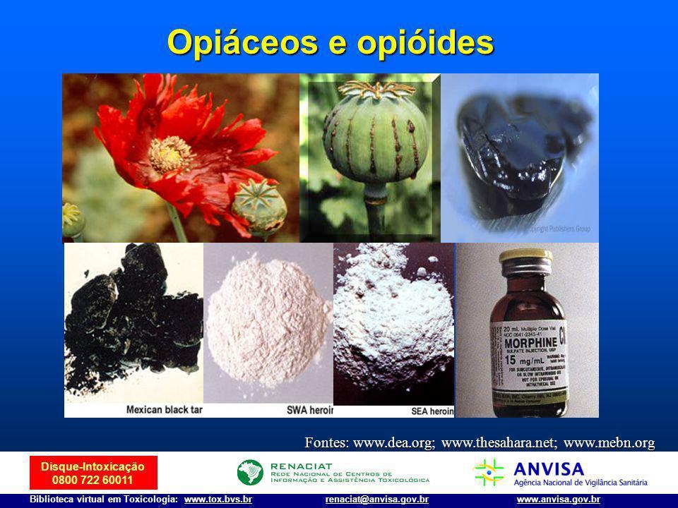 Disque-Intoxicação 0800 722 60011 Biblioteca virtual em Toxicologia: www.tox.bvs.brwww.anvisa.gov.brrenaciat@anvisa.gov.br Opiáceos e opióides Fontes: