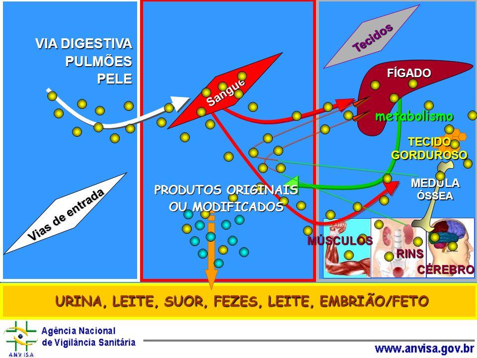 Tecidos URINA, LEITE, SUOR, FEZES, LEITE, EMBRIÃO/FETO VIA DIGESTIVA PULMÕESPELE Vias de entrada Sangue TECIDO GORDUROSO FÍGADO metabolismo MEDULA ÓSS