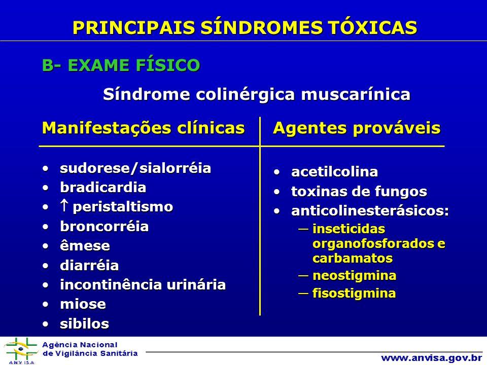 B- EXAME FÍSICO Síndrome colinérgica muscarínica Manifestações clínicas sudorese/sialorréiasudorese/sialorréia bradicardiabradicardia peristaltismo peristaltismo broncorréiabroncorréia êmeseêmese diarréiadiarréia incontinência urináriaincontinência urinária miosemiose sibilossibilos Agentes prováveis acetilcolinaacetilcolina toxinas de fungostoxinas de fungos anticolinesterásicos:anticolinesterásicos: inseticidas organofosforados e carbamatosinseticidas organofosforados e carbamatos neostigminaneostigmina fisostigminafisostigmina PRINCIPAIS SÍNDROMES TÓXICAS
