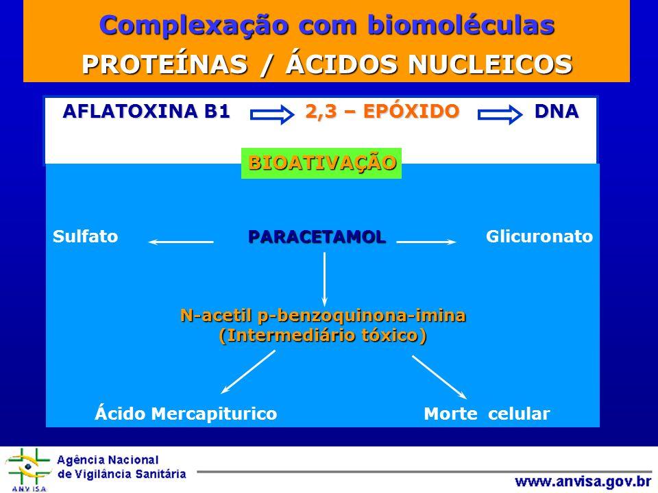 Complexação com biomoléculas PROTEÍNAS / ÁCIDOS NUCLEICOS AFLATOXINA B1 2,3 – EPÓXIDO DNA PARACETAMOL Sulfato PARACETAMOL Glicuronato N-acetil p-benzoquinona-imina (Intermediário tóxico) Ácido Mercapiturico Morte celular BIOATIVAÇÃO