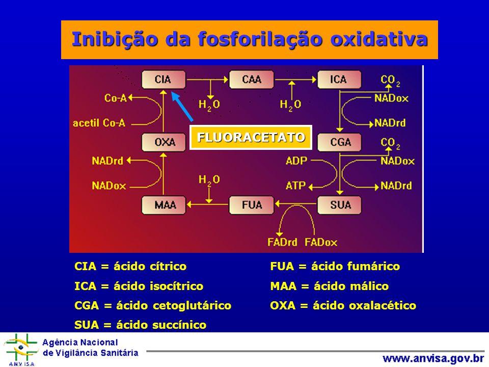 Inibição da fosforilação oxidativa CIA = ácido cítricoFUA = ácido fumárico ICA = ácido isocítricoMAA = ácido málico CGA = ácido cetoglutáricoOXA = ácido oxalacético SUA = ácido succínico FLUORACETATO