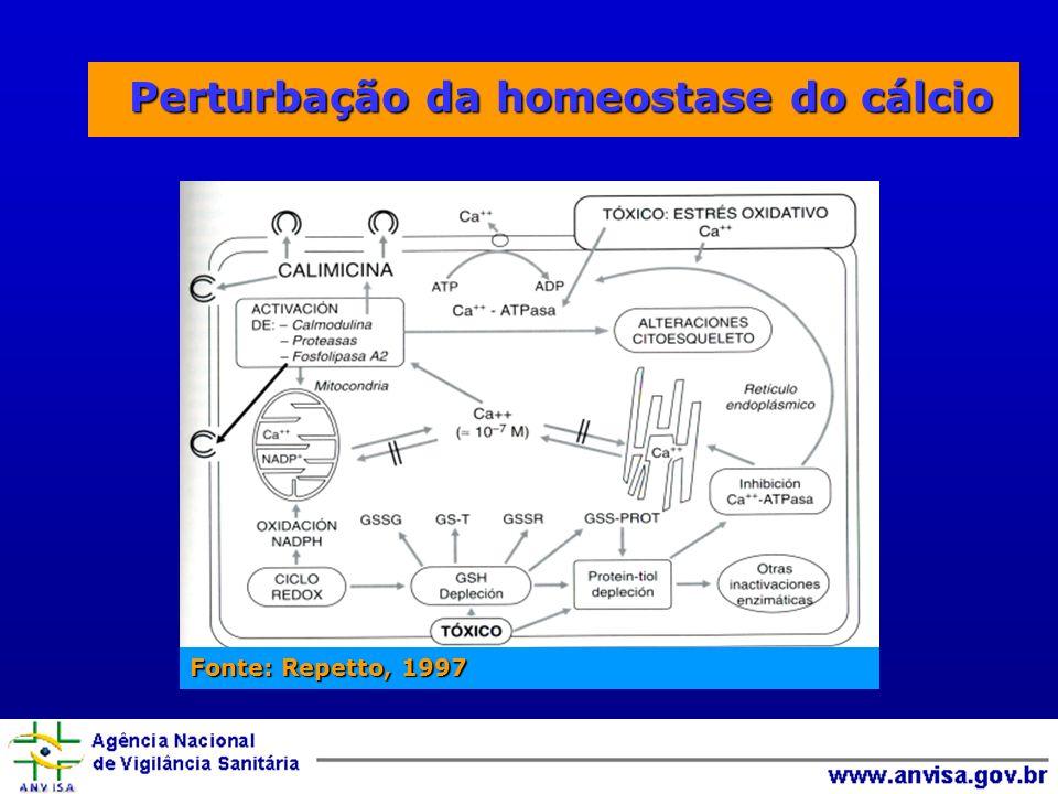 Perturbação da homeostase do cálcio Perturbação da homeostase do cálcio Fonte: Repetto, 1997