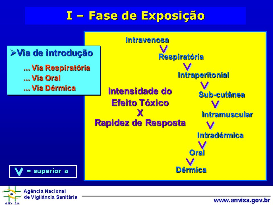 I – Fase de Exposição Intravenosa Respiratória Dérmica Intraperitonial Sub-cutânea Intramuscular Intradérmica Oral Intensidade do Efeito Tóxico X Rapi
