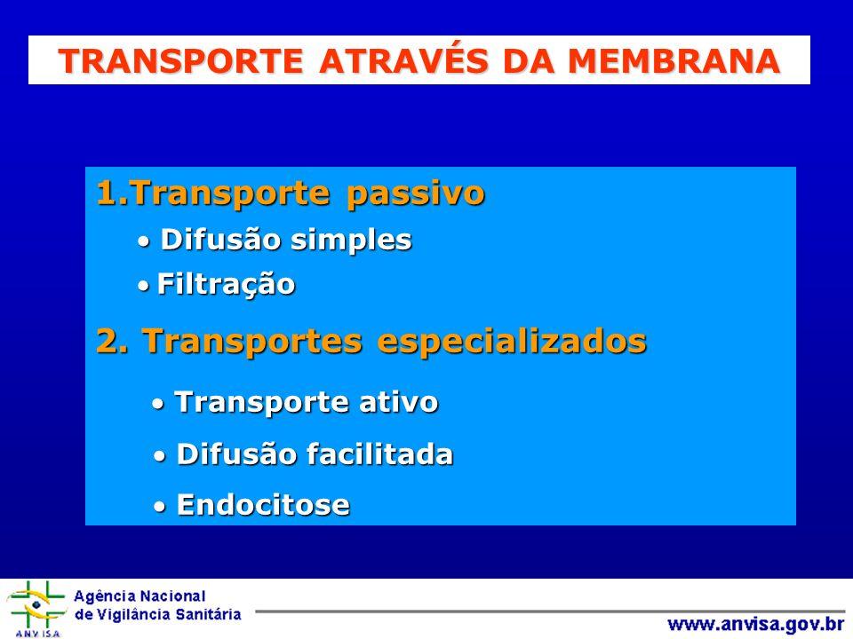 TRANSPORTE ATRAVÉS DA MEMBRANA 1.Transporte passivo Difusão simples Difusão simples FiltraçãoFiltração 2. Transportes especializados Transporte ativo