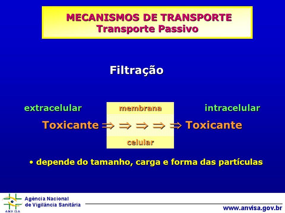 depende do tamanho, carga e forma das partículas depende do tamanho, carga e forma das partículas Filtração extracelular intracelular Toxicante Toxicante membranacelular MECANISMOS DE TRANSPORTE Transporte Passivo MECANISMOS DE TRANSPORTE Transporte Passivo