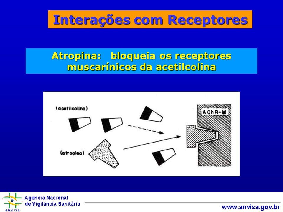 Interações com Receptores Atropina: bloqueia os receptores muscarínicos da acetilcolina
