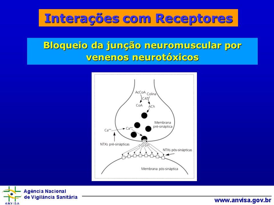 Interações com Receptores Bloqueio da junção neuromuscular por venenos neurotóxicos
