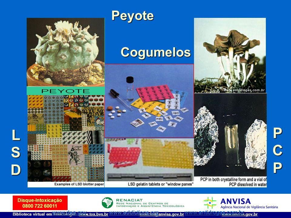 Disque-Intoxicação 0800 722 60011 Biblioteca virtual em Toxicologia: www.tox.bvs.brwww.anvisa.gov.brrenaciat@anvisa.gov.br LSDLSDLSDLSD PCPPCPPCPPCP P