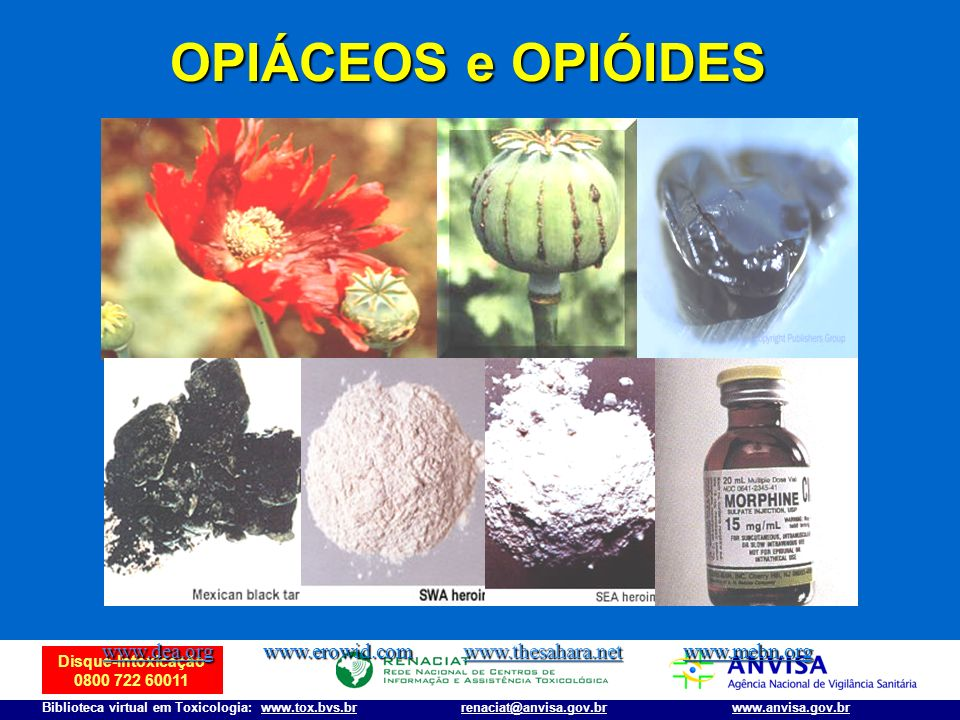 Disque-Intoxicação 0800 722 60011 Biblioteca virtual em Toxicologia: www.tox.bvs.brwww.anvisa.gov.brrenaciat@anvisa.gov.br OPIÁCEOS e OPIÓIDES www.dea