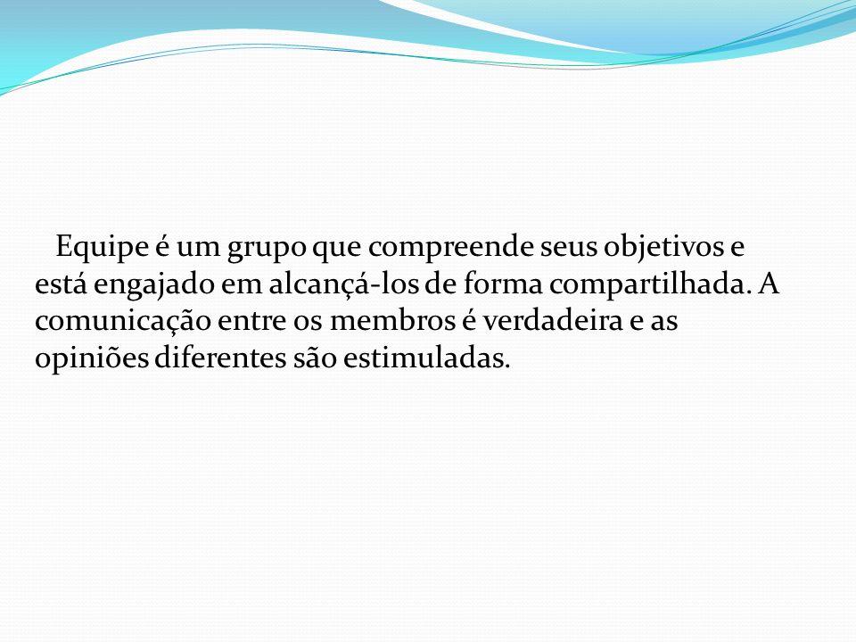 Equipe é um grupo que compreende seus objetivos e está engajado em alcançá-los de forma compartilhada. A comunicação entre os membros é verdadeira e a