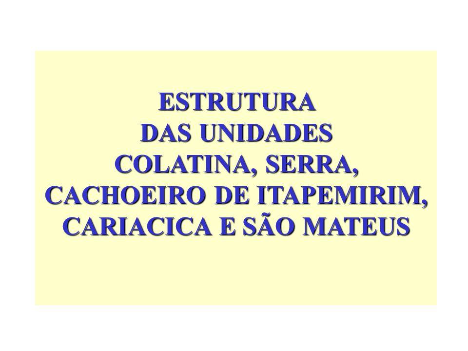 ESTRUTURA DAS UNIDADES COLATINA, SERRA, CACHOEIRO DE ITAPEMIRIM, CARIACICA E SÃO MATEUS