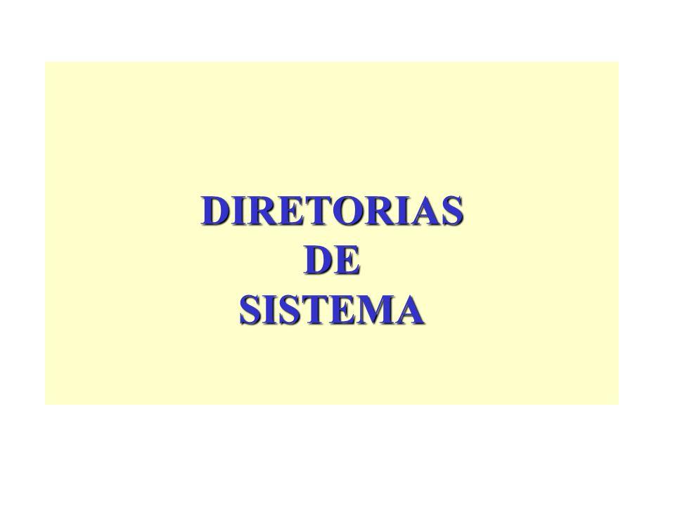 DIRETORIAS DE SISTEMA