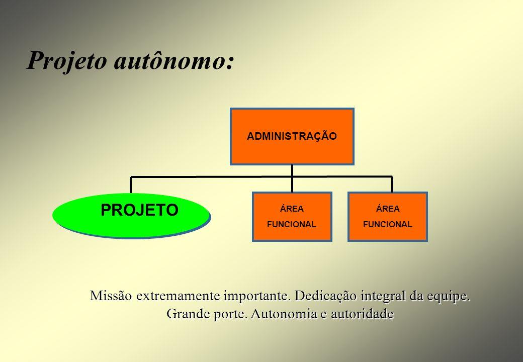 Negócio Missão Diretrizes Objetivos Ambiente interno Ambiente externo Metas Plano Estratégico Programa 1Programa mPrograma 2 P P Projeto m.1 P P Proje