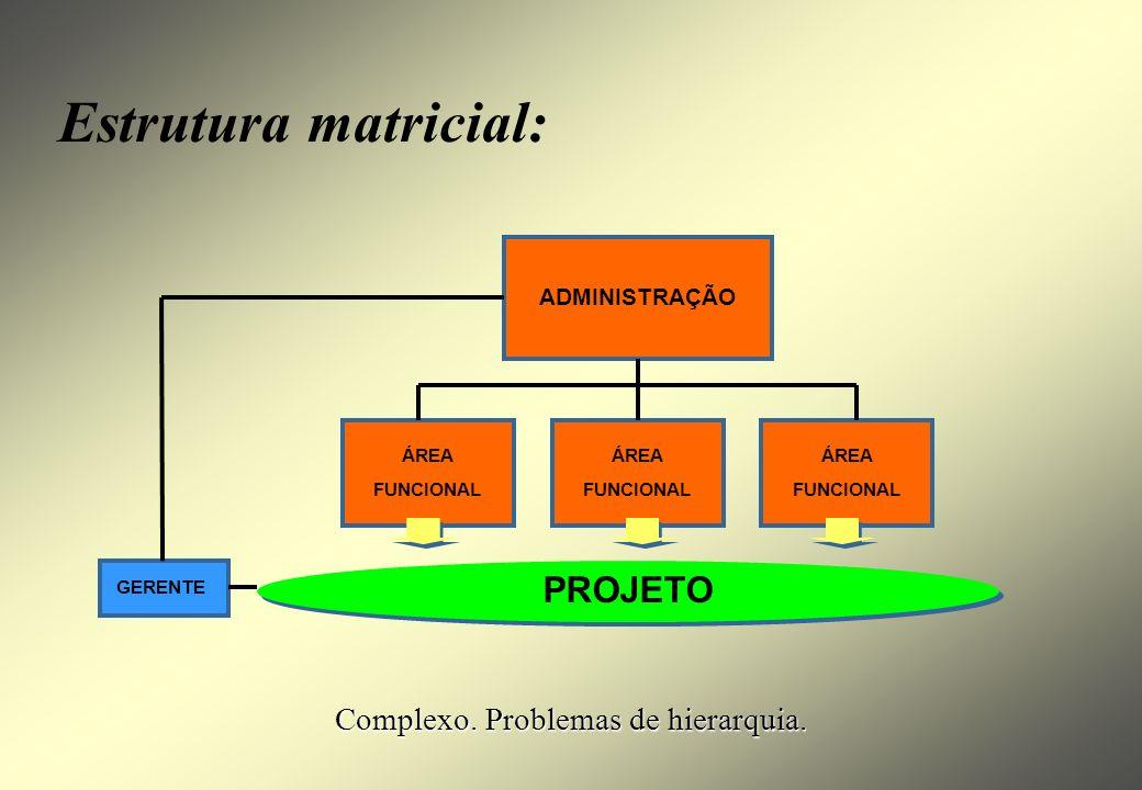 ÁREA FUNCIONAL ADMINISTRAÇÃO ÁREA FUNCIONAL ÁREA FUNCIONAL PROJETO Projeto monodisciplinar : Mais simples. Gerente técnico.