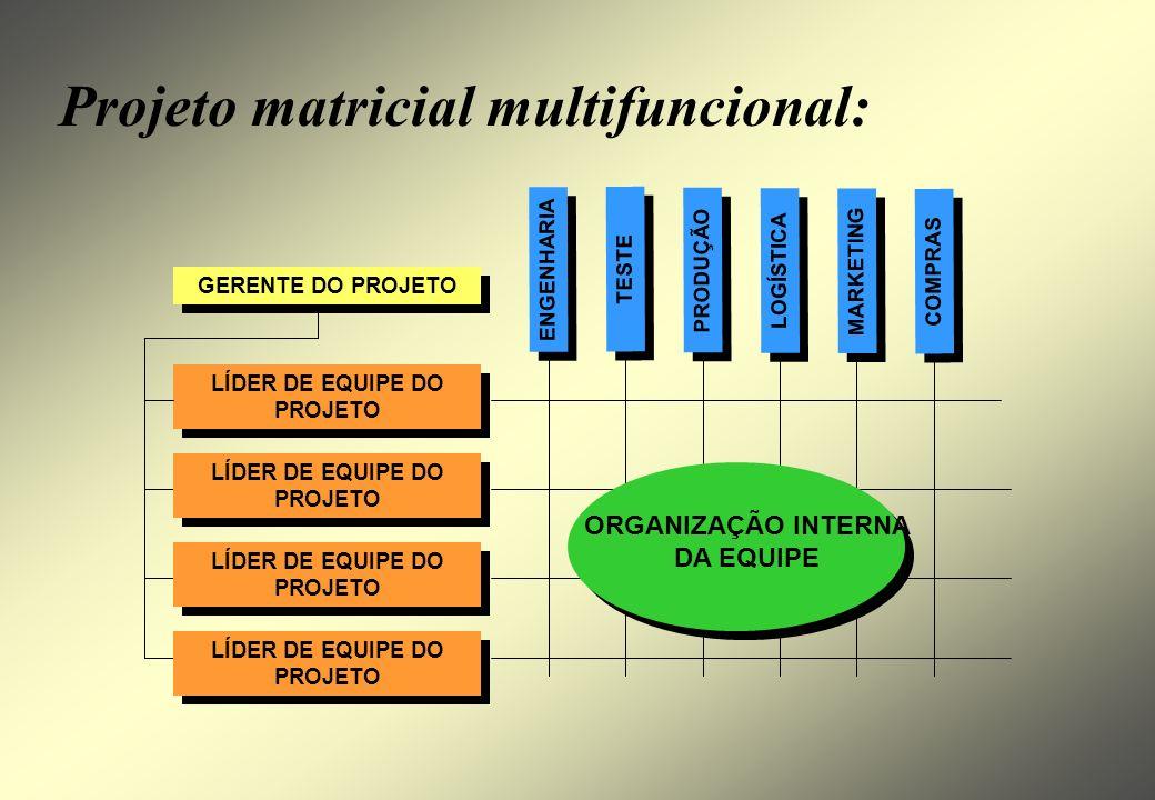 Estrutura matricial: ÁREA FUNCIONAL ADMINISTRAÇÃO ÁREA FUNCIONAL ÁREA FUNCIONAL PROJETO GERENTE Complexo. Problemas de hierarquia.