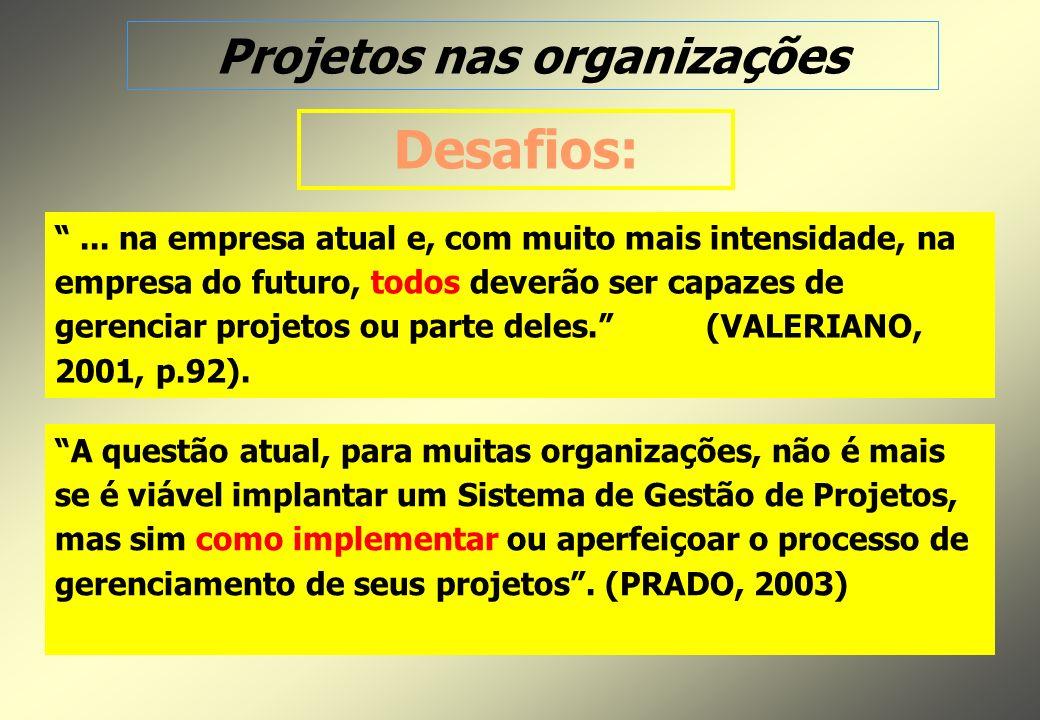 Projetos nas organizações...