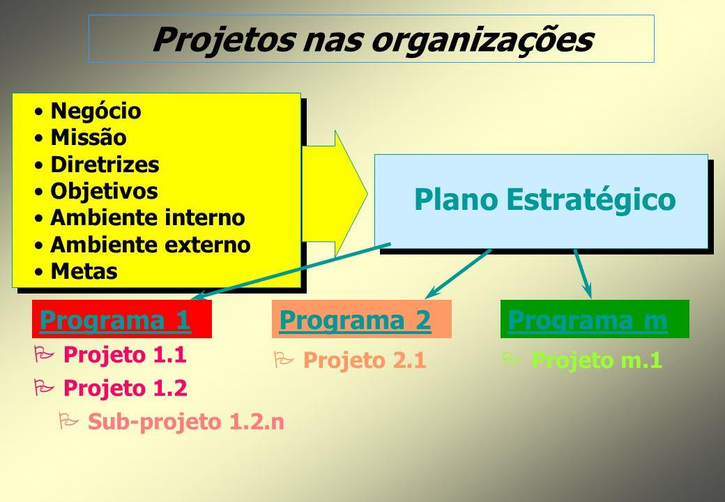 Negócio Missão Diretrizes Objetivos Ambiente interno Ambiente externo Metas Plano Estratégico Programa 1Programa mPrograma 2 P P Projeto m.1 P P Projeto 1.1 P P Projeto 1.2 P P Sub-projeto 1.2.n P P Projeto 2.1 Projetos nas organizações