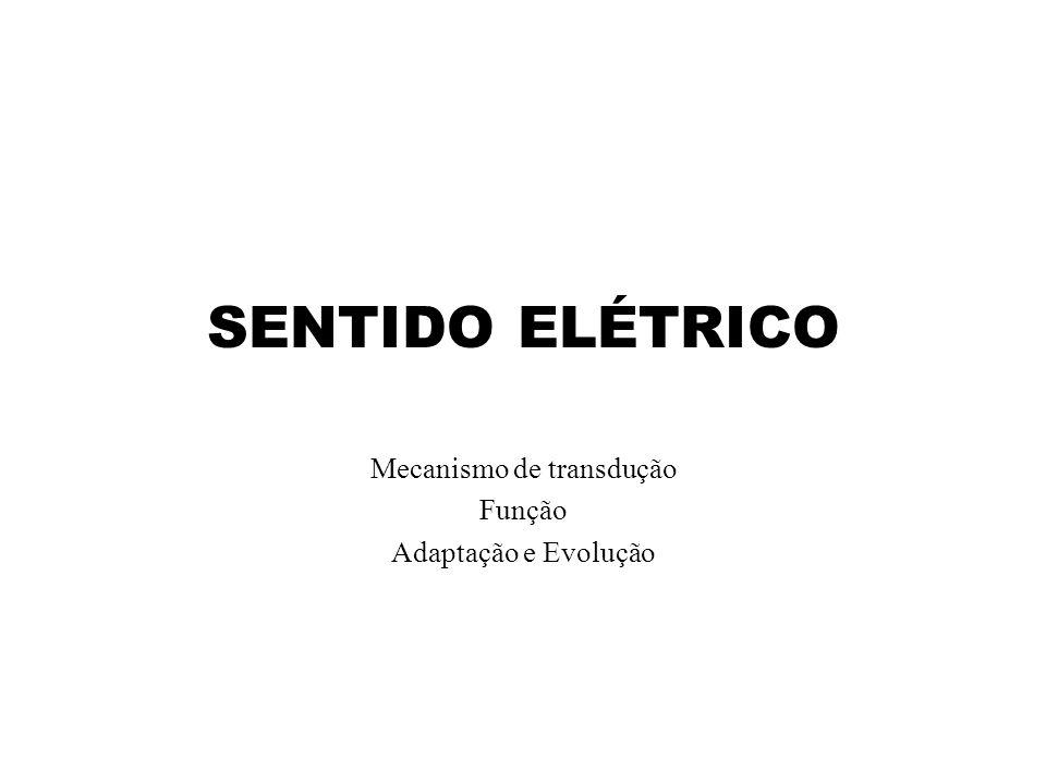 SENTIDO ELÉTRICO Mecanismo de transdução Função Adaptação e Evolução