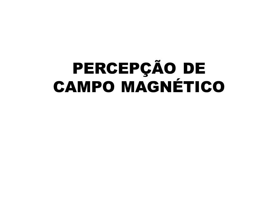 PERCEPÇÃO DE CAMPO MAGNÉTICO