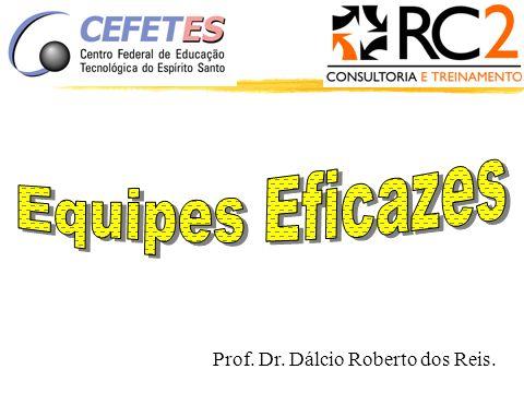Prof. Dr. Dálcio Roberto dos Reis.