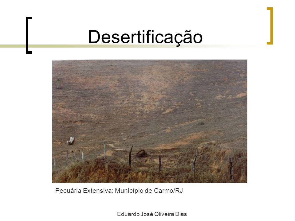 Desertificação Eduardo José Oliveira Dias Pecuária Extensiva: Município de Carmo/RJ
