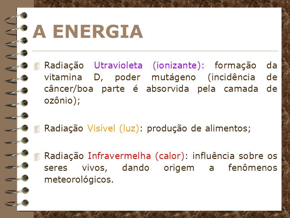 LEIS DA ENERGIA 4 Todo e qualquer fenômeno que ocorre na natureza necessita de energia para ocorrer; 4 Primeira lei: a energia do universo é constante; 4 Segunda lei: a entropia no universo tende ao máximo.