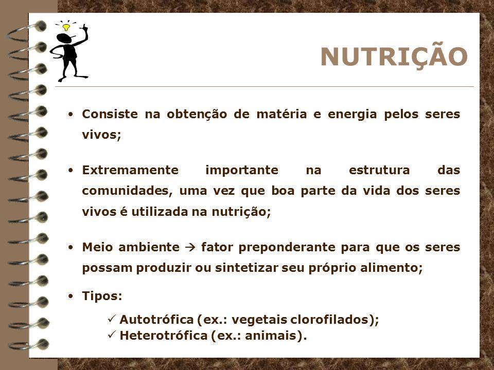 NUTRIÇÃO NUTRIÇÃO HETEROTRÓFICA O homem se destaca como o consumidor heterotrófico mais relevante, chegando a consumir mais compostos orgânicos do que a quantidade usada como alimento.