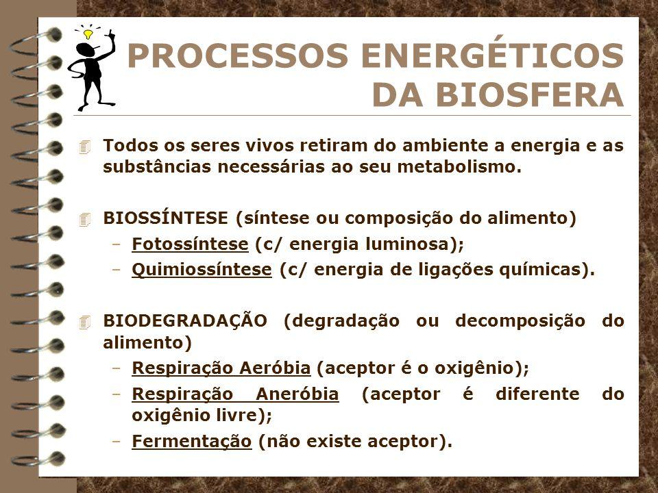 BIOSSÍNTESE Fotossíntese energia utilizada para a síntese do alimento provém da luz.