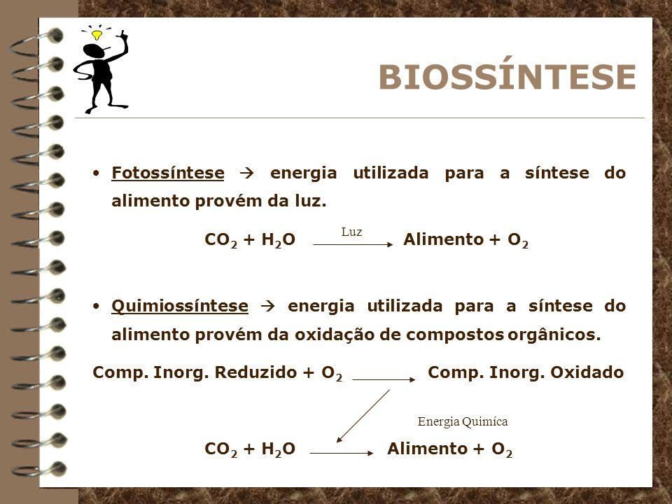 BIODEGRAÇÃO Respiração aeróbia receptor final dos hidrogênios é o oxigênio.