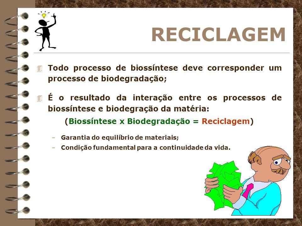 Vamos exercitar.1. Identifique e explique os processos energéticos utilizados pelos seres vivos.