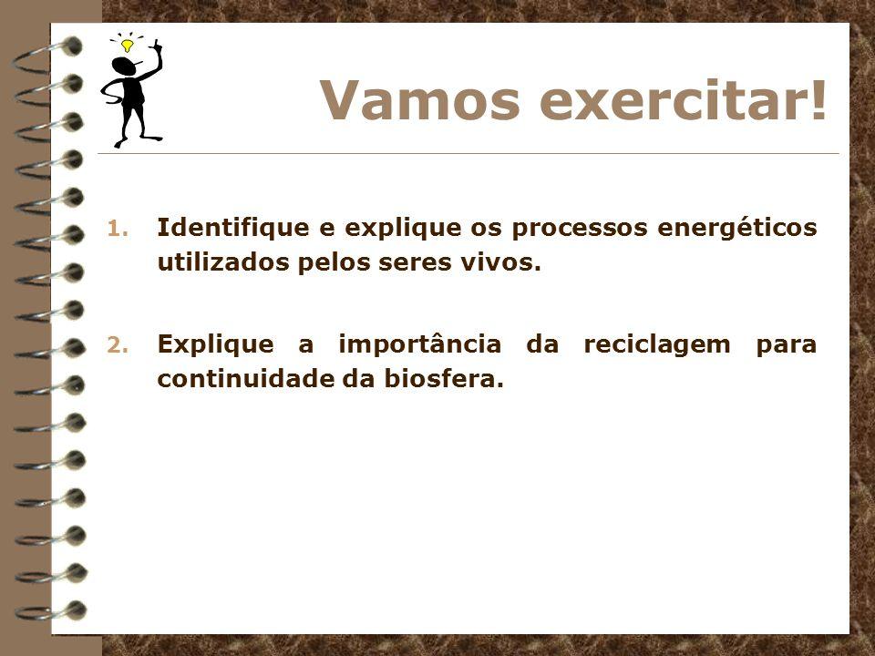 Vamos exercitar! 1. Identifique e explique os processos energéticos utilizados pelos seres vivos. 2. Explique a importância da reciclagem para continu