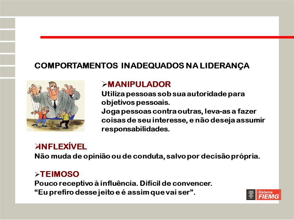 30-03-201428 Liderança orientada para o planejamento e a organização.