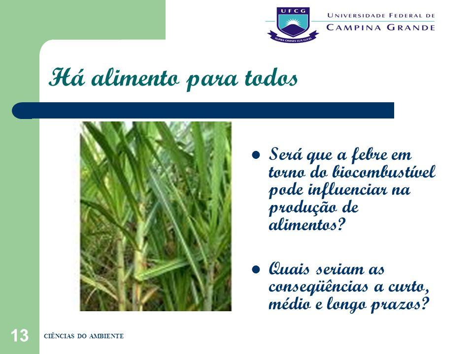 13 Há alimento para todos Será que a febre em torno do biocombustível pode influenciar na produção de alimentos? Quais seriam as conseqüências a curto