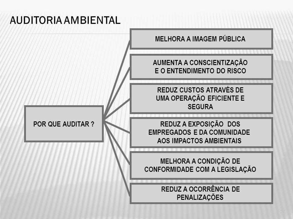 Modelo de gestão empresarial Questão ambiental nas relações de comércio internacional e mercado interno Desenvolvi mento sustentável AUDITORIA AMBIENT