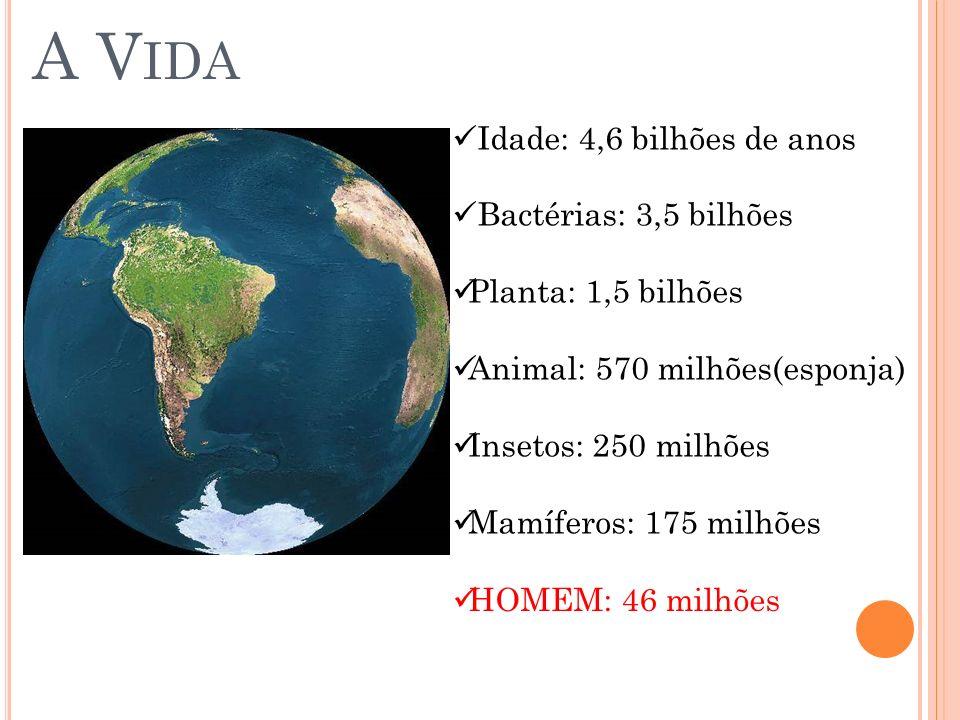 A V IDA Idade: 4,6 bilhões de anos Bactérias: 3,5 bilhões Planta: 1,5 bilhões Animal: 570 milhões(esponja) Insetos: 250 milhões Mamíferos: 175 milhões
