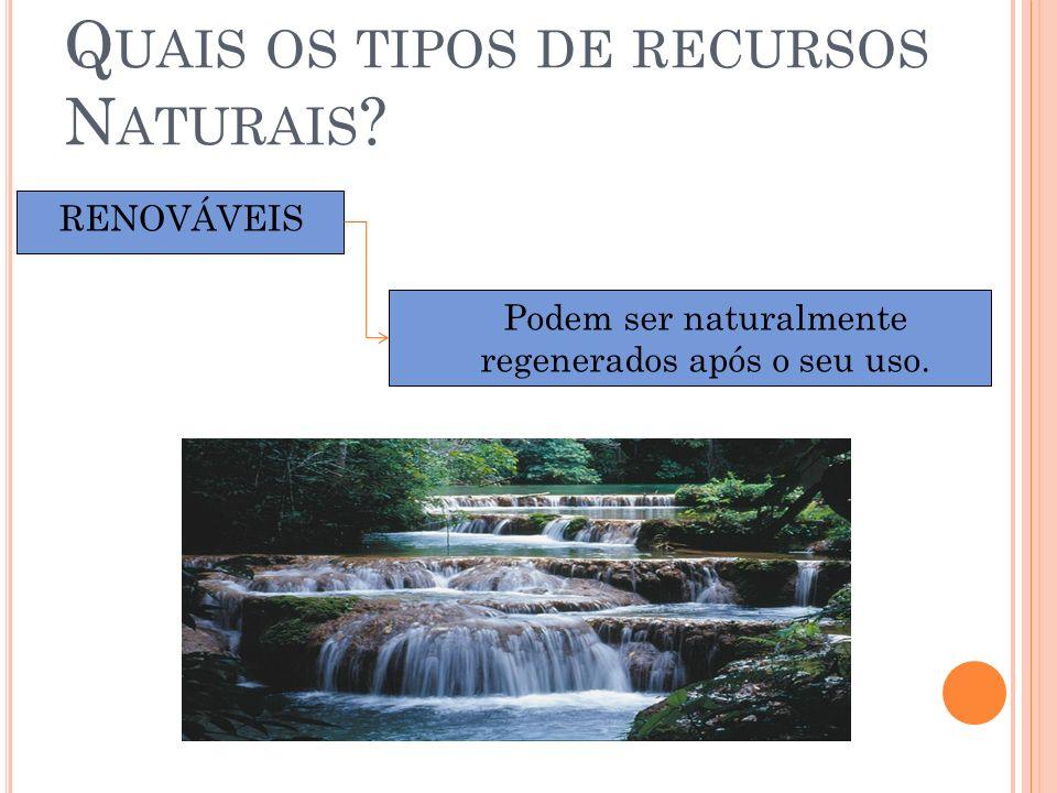 Q UAIS OS TIPOS DE RECURSOS N ATURAIS ? RENOVÁVEIS Podem ser naturalmente regenerados após o seu uso.