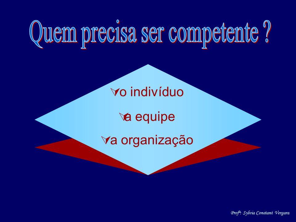 o indivíduo a equipe a organização Profª: Sylvia Constant Vergara