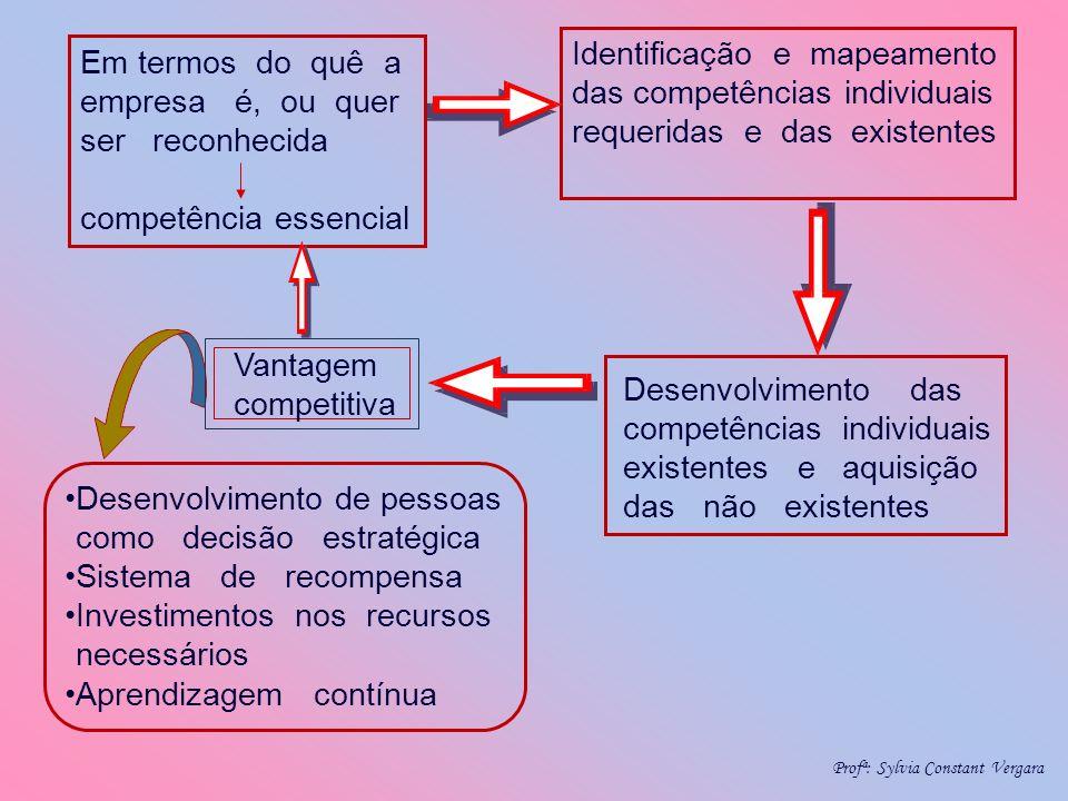 Em termos do quê a empresa é, ou quer ser reconhecida competência essencial Identificação e mapeamento das competências individuais requeridas e das e