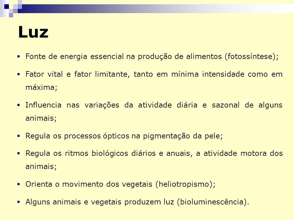 Fonte de energia essencial na produção de alimentos (fotossíntese); Fator vital e fator limitante, tanto em mínima intensidade como em máxima; Influen