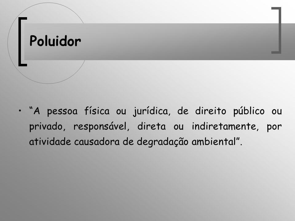 Poluidor A pessoa física ou jurídica, de direito público ou privado, responsável, direta ou indiretamente, por atividade causadora de degradação ambie