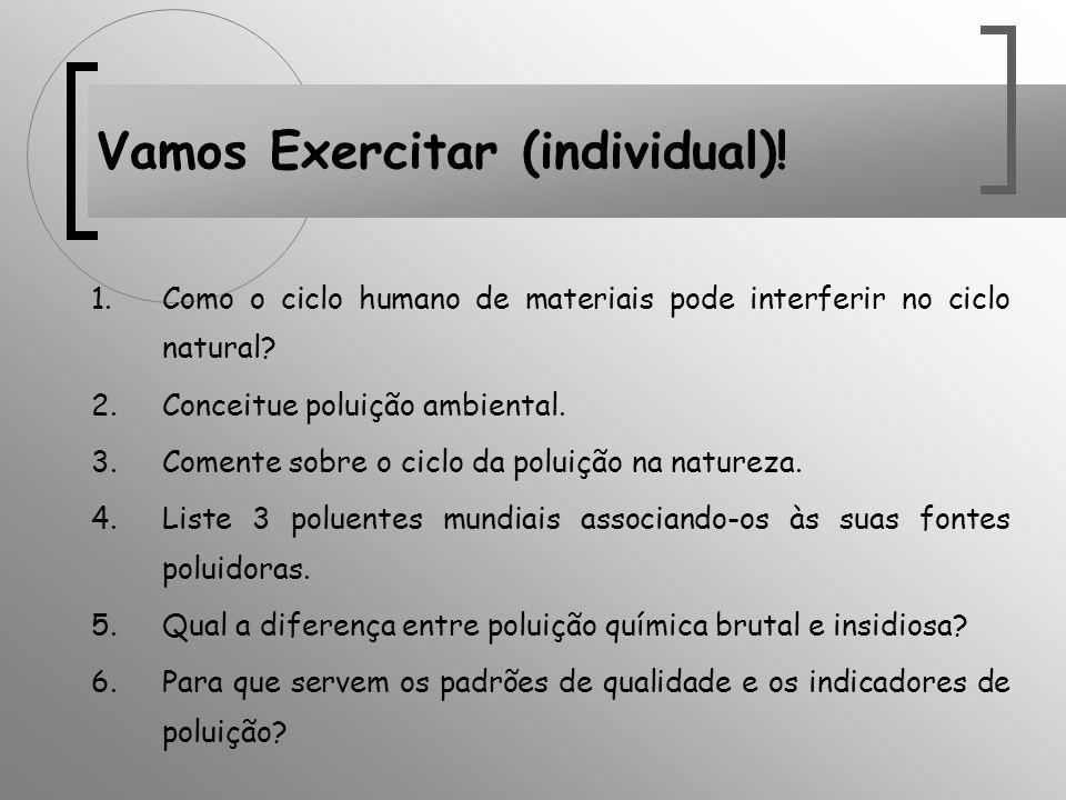 1.Como o ciclo humano de materiais pode interferir no ciclo natural? 2.Conceitue poluição ambiental. 3.Comente sobre o ciclo da poluição na natureza.