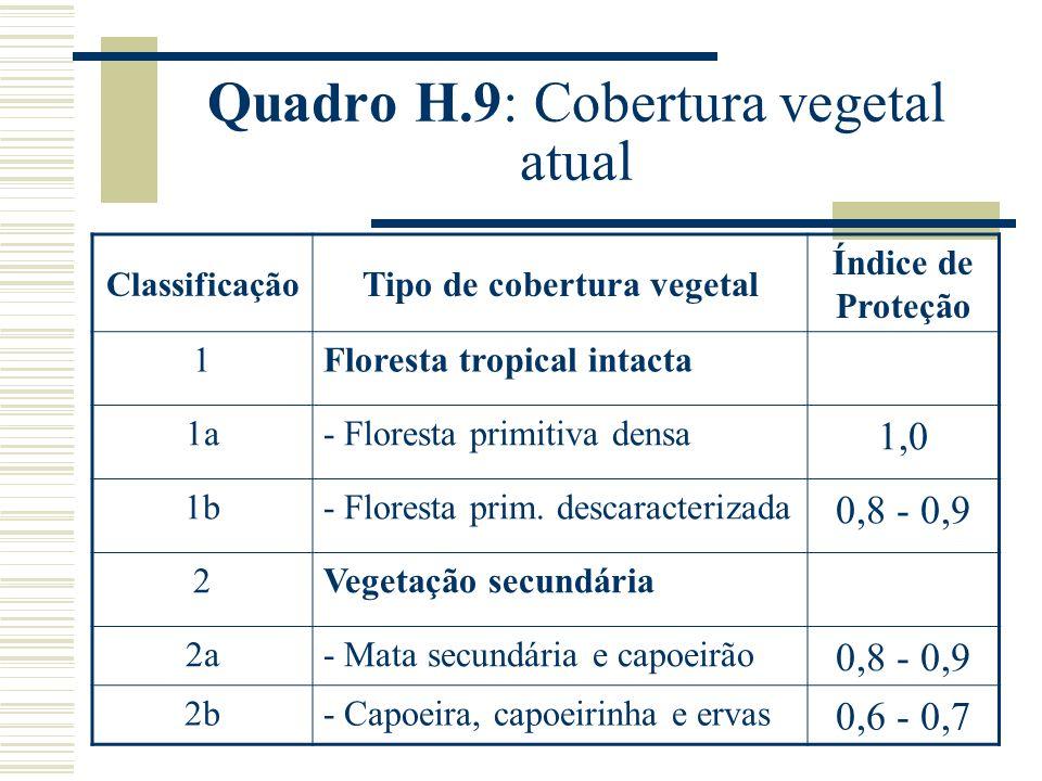 Quadro H.9: Cobertura vegetal atual Classificação Tipo de cobertura vegetal Índice de Proteção 1Floresta tropical intacta 1a- Floresta primitiva densa 1,0 1b- Floresta prim.