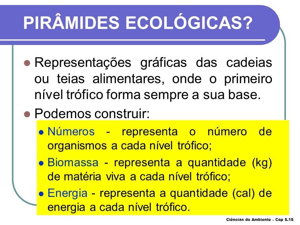 COMPARAÇÃO DOIS ENTRE ECOSSISTEMAS Ciências do Ambiente – Cap 5.14