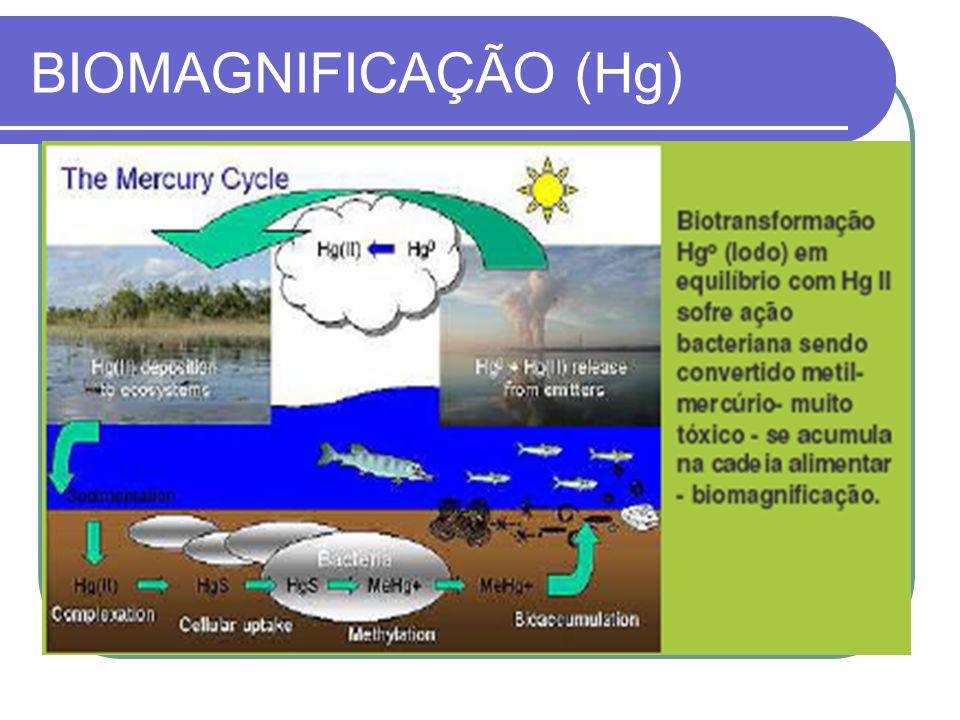 O vilão dos metais www.revistaenfoque.com.br/index.php?edicao=49&materia=146